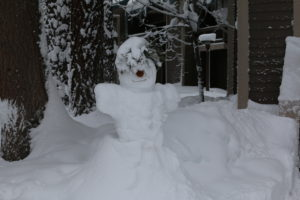 Snow Sculptures at Lakeland Village
